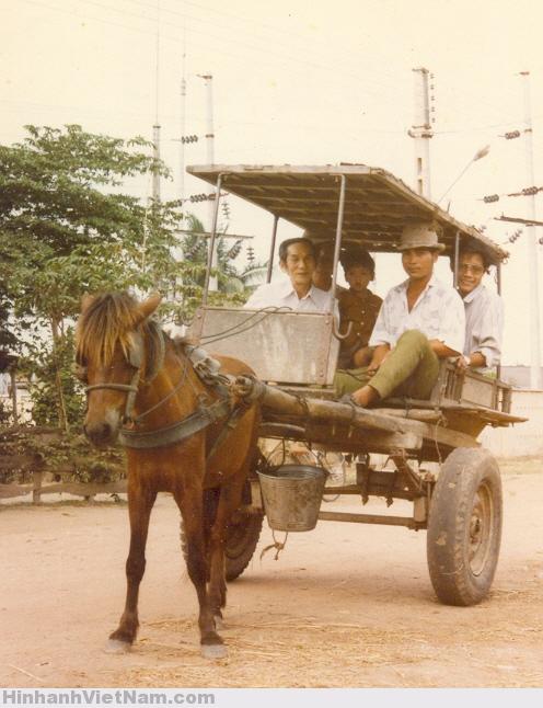 PhuongTienDiChuyen NguyenNgocChinh16